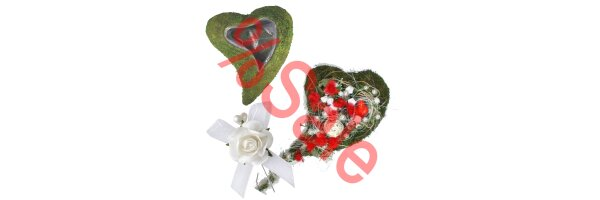 Floristik + Bänder