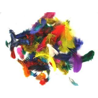Schmuckfedern - Mix, 10 g, 180-200 Stück, versch. farbig sort.