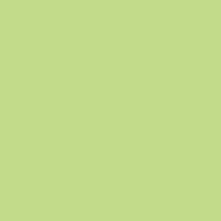 Tonzeichenpapier, 50 x 70 cm, 130 g/qm, apfelgrün, 10 Bogen