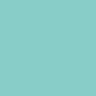 Fotokarton, 50 x 70 cm, 300 g/qm, pastelltürkis, 10 Bogen