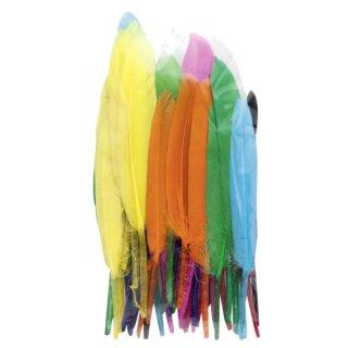 Indianerfedern, 10 g, farbig sortiert