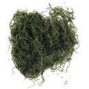 Dschungelmoos, SB-Btl. 20 g, grün