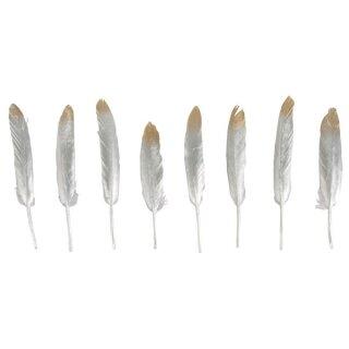 Deko-Feder gold/silber, 12-15cm, SB-Btl 8Stück